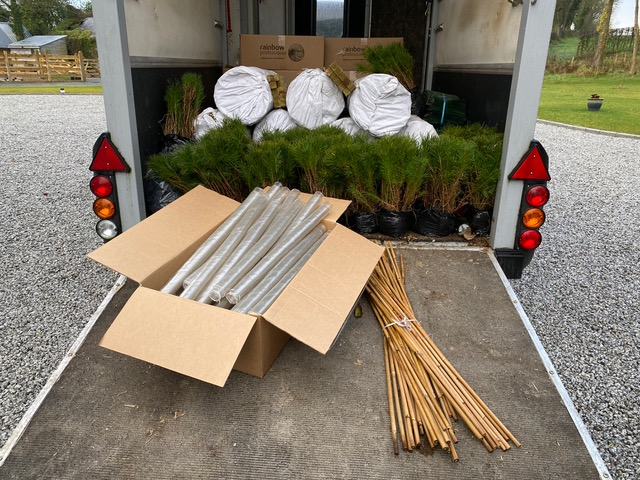 IndiWoods Tree Shop - bare rooted trees and tree guards ready for delivery