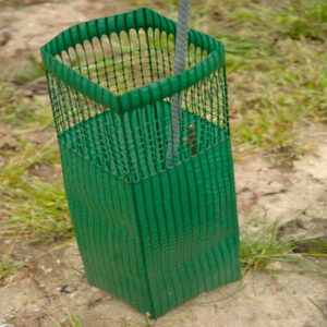 Tree Guards for Scots Pine from IndiWoods Tree Shop